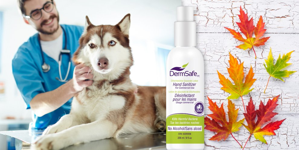 image of a veerinarian and dermsafe hand sanitizer